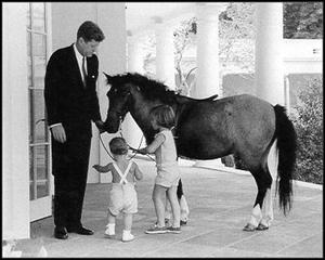 kennedy_pony.jpg