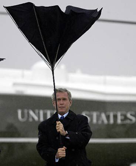 bush_umbrella.jpg